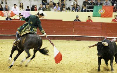 Tribunal considera inconstitucional proibição de touradas